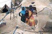 هشدار درباره احتمال مرگ ۱۵۰ هزار کودک یمنی