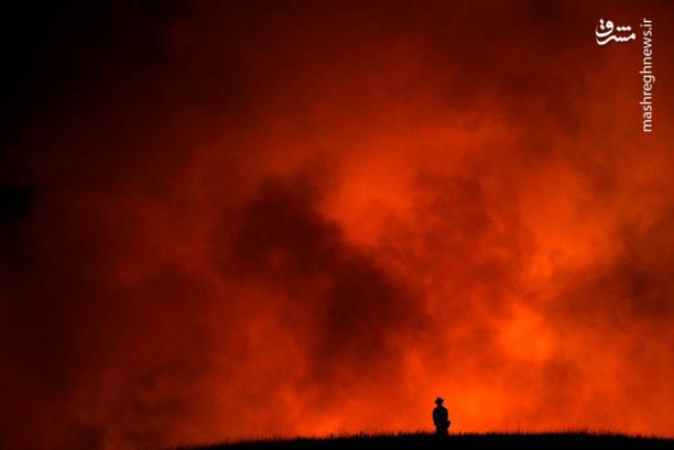گسترش آتش سوزی مهیب در کالیفرنیا