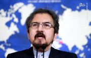 واکنش وزارت خارجه به بازداشت زاغری