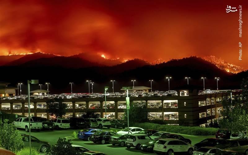 آتش سوزی جنگلها در کالیفرنیا