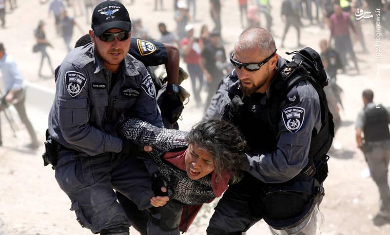 بازداشت یک دختر فلسطینی در تظاهرات مردم مقابل اشغالگران صهیونیستی در حمایت از دهکده خان الاحمر که اسرائیل قصد تخریب آن برای شهرک سازی های خود را دارد.