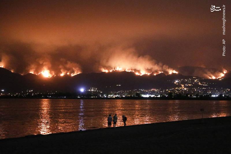 تصویری از چشمانداز شبانه آتشسوزی در جنگل ملی کلیولند در کالیفرنیا.